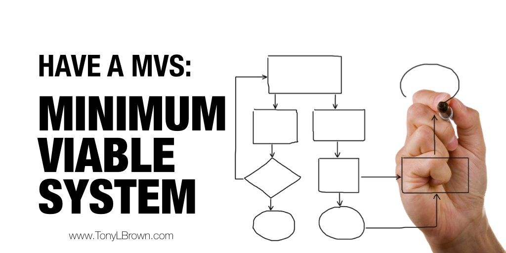 minimum viable system-2
